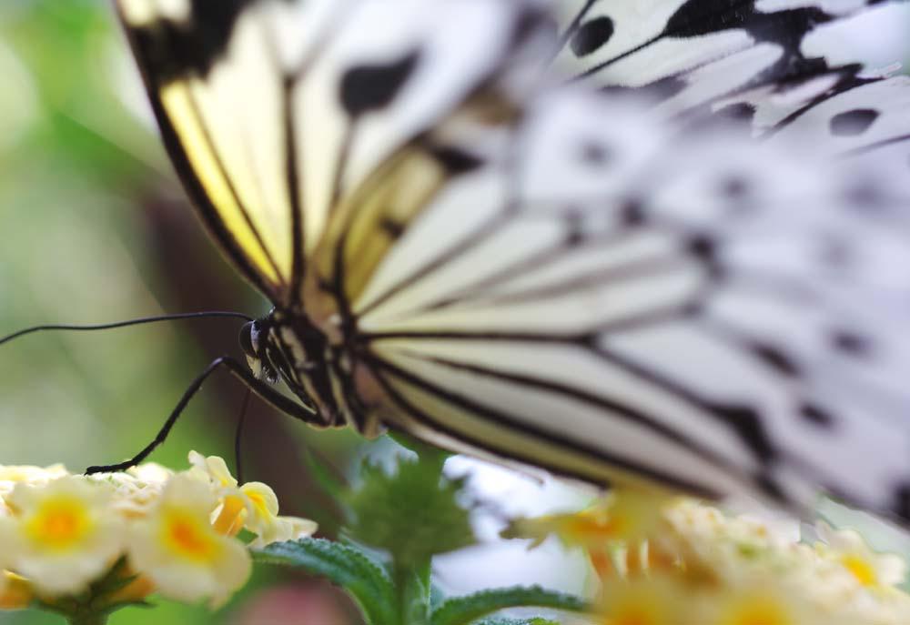 http://www.yunphoto.net/mid/yun_3448.jpg