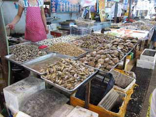photo,material,free,landscape,picture,stock photo,Creative Commons,An eastern edge market, shop, market, fish shop, It is lively