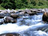 photo,material,free,landscape,picture,stock photo,Creative Commons,Whitewater rapids, whitewater, rapids, stream,