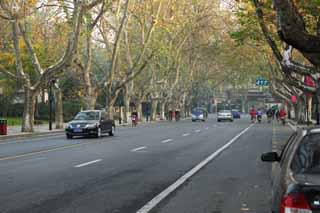 photo,material,free,landscape,picture,stock photo,Creative Commons,Row of houses along a city street of Hangzhou, plane tree, road, car, street