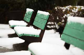 photo,material,free,landscape,picture,stock photo,Creative Commons,A snowy bench, chair, White, bench,