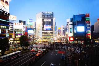 photo,material,free,landscape,picture,stock photo,Creative Commons,Shibuya free intersection, crowd, walker, bus, Neon