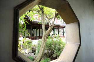 photo,material,free,landscape,picture,stock photo,Creative Commons,Lingering Garden window, , , ,