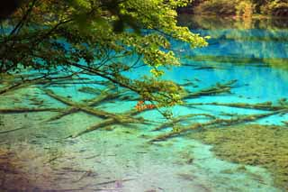 photo,material,free,landscape,picture,stock photo,Creative Commons,Jiuzhaigou Gohanaumi, , , ,