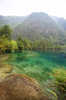 photo,material,free,landscape,picture,stock photo,Creative Commons,Jiuzhaigou Saiushiumi, , , ,