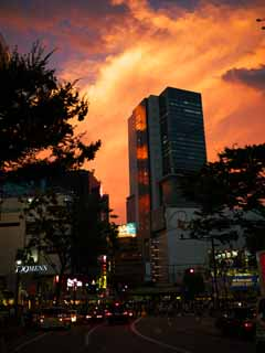 photo,material,free,landscape,picture,stock photo,Creative Commons,Sunset a glowing Shibuya, , , ,