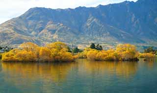 photo,material,free,landscape,picture,stock photo,Creative Commons,In the fall of Lake Wakatipu, , , ,