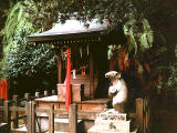 photo,material,free,landscape,picture,stock photo,Creative Commons,Shrine of a Japanese dancing mouse, , , ,