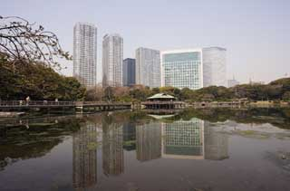 photo,material,free,landscape,picture,stock photo,Creative Commons,A group of Shiodome Building and a pond of damage by sea water, pond, building, I am Japanese-style,