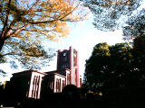 photo,material,free,landscape,picture,stock photo,Creative Commons,Yasuda Auditorium in autumn, sky, Tokyo University, ,