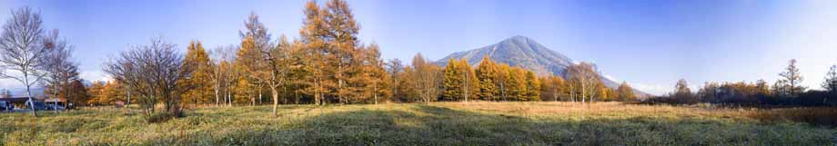 photo,material,free,landscape,picture,stock photo,Creative Commons,Senjogahara in late fall, Mt. male figure, Colored leaves, Panoramcomposition, Panorama