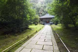 photo,material,free,landscape,picture,stock photo,Creative Commons,The House of encyclopedic knowledge of Matsushima, Buddhist temple and Shinto shrine, The main hall of Buddhist temple, way, stone pavement