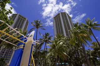 photo,material,free,landscape,picture,stock photo,Creative Commons,Waikiki hotel, beach, surfboard, blue sky, building