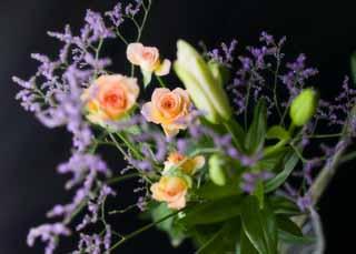 photo, la matière, libre, aménage, décrivez, photo de la réserve,Un bouquet, rose, lis, lis, rose