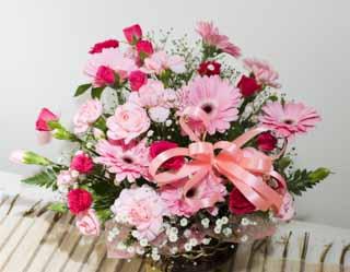 photo, la matière, libre, aménage, décrivez, photo de la réserve,Arrangement de la fleur, Arrangement de la fleur, Arrangement de la fleur, rose, Tourmentez l'herbe