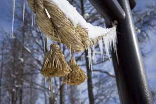 photo,material,free,landscape,picture,stock photo,Creative Commons,Is numb || occupy it, and is a rope, icicle, Shinto straw festoon, It is snowy, torii