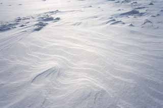 photo,material,free,landscape,picture,stock photo,Creative Commons,A snowy wind-wrought pattern on the sands, wind-wrought pattern on the sands, snowy field, Wind,