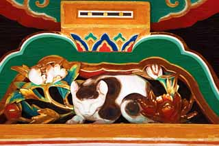 illustration,material,free,landscape,picture,painting,color pencil,crayon,drawing,A sleep cat of Tosho-gu Shrine, sleep cat, world heritage, Jingoro Hidari, wood carving