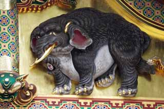 photo,material,free,landscape,picture,stock photo,Creative Commons,An elephant of imagination of Tosho-gu Shrine, An elephant of imagination, Gold leaf, An animal,