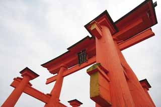 photo,material,free,landscape,picture,stock photo,Creative Commons,Otorii of Itsukushima-jinja Shrine, World's cultural heritage, Otorii, Shinto shrine, I am cinnabar red