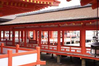 photo,material,free,landscape,picture,stock photo,Creative Commons,A corridor of Itsukushima-jinja Shrine, World's cultural heritage, Otorii, Shinto shrine, I am cinnabar red