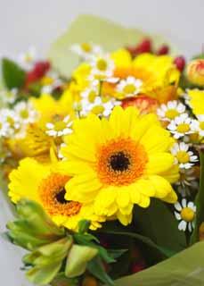 photo, la matière, libre, aménage, décrivez, photo de la réserve,Un bouquet extravagant, fleur, bouquet, La présentation, Jaune