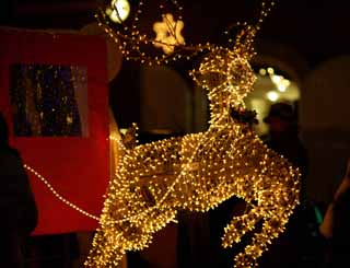 photo,material,free,landscape,picture,stock photo,Creative Commons,Illuminations of a deer, Illuminations, Christmas tree, Light, carriage