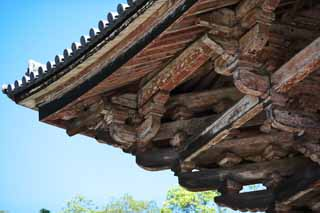 photo,material,free,landscape,picture,stock photo,Creative Commons,I cross the tree of Nandaimon Higashiooji, The gate, wooden building, Buddhism, temple
