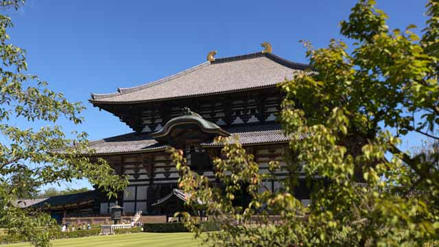 photo,material,free,landscape,picture,stock photo,Creative Commons,The Todai-ji Temple Hall of the Great Buddha, great statue of Buddha, wooden building, Buddhism, temple