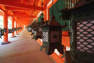 photo,material,free,landscape,picture,stock photo,Creative Commons,Kasuga Taisha Shrine corridor, Shinto, Shinto shrine, I am painted in red, garden lantern