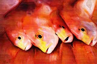 illustration,material,free,landscape,picture,painting,color pencil,crayon,drawing,The red of the sea bream, Thailand, sea bream, , fish shop