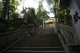 photo,material,free,landscape,picture,stock photo,Creative Commons,Kompira-san Shrine approach to a shrine, Shinto shrine Buddhist temple, torii, stone stairway, Shinto