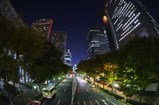 photo,material,free,landscape,picture,stock photo,Creative Commons,Shinjuku at night, High-rise, Subcenter, Night Scene, Building
