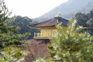 photo,material,free,landscape,picture,stock photo,Creative Commons,Golden Pavilion Temple reliquary hall, World Heritage, Golden Pavilion, Ashikaga Yoshimitsu, Kyoto