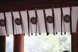 photo,material,free,landscape,picture,stock photo,Creative Commons,Gate Curtain in Kashihara Shrine, Shinto, , Chronicles of Japan, Kojiki