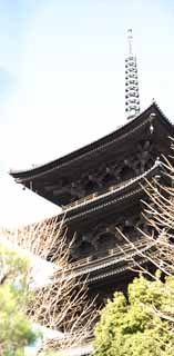 photo,material,free,landscape,picture,stock photo,Creative Commons,To-ji Temple five-story pagoda, Buddhism, Tower, World Heritage, Quintuple tower