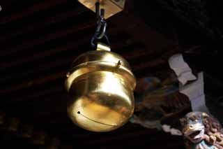 photo,material,free,landscape,picture,stock photo,Creative Commons,Kitano Tenman-gu shrine's main hall bell, Bell, Noisemaker, Kitano, Plums