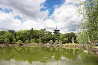 photo,material,free,landscape,picture,stock photo,Creative Commons,A pond of Sarusawa, willow, pond, Nara-koen Park, tourist attraction