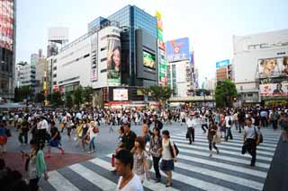 photo,material,free,landscape,picture,stock photo,Creative Commons,The crossing of Shibuya Station, Downtown, walker, pedestrian crossing, crowd
