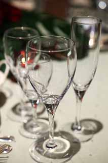 photo,material,free,landscape,picture,stock photo,Creative Commons,A wineglass, wineglass, party, banquet, glass