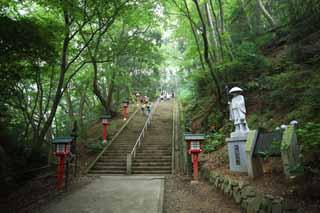 photo,material,free,landscape,picture,stock photo,Creative Commons,A mountain trail of Mt. Takao, The ascetic practices Great Teacher, Mountain climbing, Hiking, forest