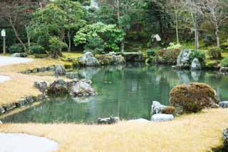photo,material,free,landscape,picture,stock photo,Creative Commons,Tenryu-ji garden, Chaitya, pond, world heritage, Sagano