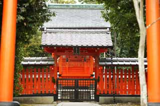 photo,material,free,landscape,picture,stock photo,Creative Commons,Tenryu-ji Shrine, Shinto shrine, I am painted in red, world heritage, Sagano