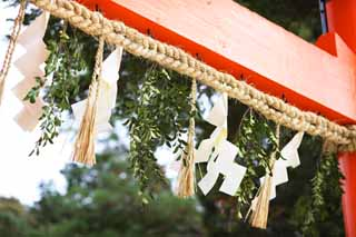 photo,material,free,landscape,picture,stock photo,Creative Commons,Two Kamigamo Shrine toriis, torii, Shinto straw festoon, Prevention against evil, The Emperor