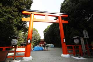 photo,material,free,landscape,picture,stock photo,Creative Commons,Shimogamo Shrine company torii, Shinto, Prevention against evil, Precincts, Shinto shrine gate