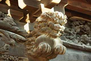 photo,material,free,landscape,picture,stock photo,Creative Commons,Shibamata Taishaku-ten Temple sculpture, lion, sculpture, grain of wood, Buddhism