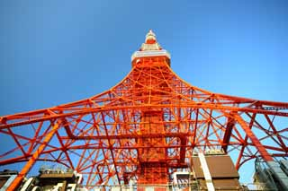 photo,material,free,landscape,picture,stock photo,Creative Commons,Tokyo Tower, collection electric wave tower, Red and white, An antenna, An observatory