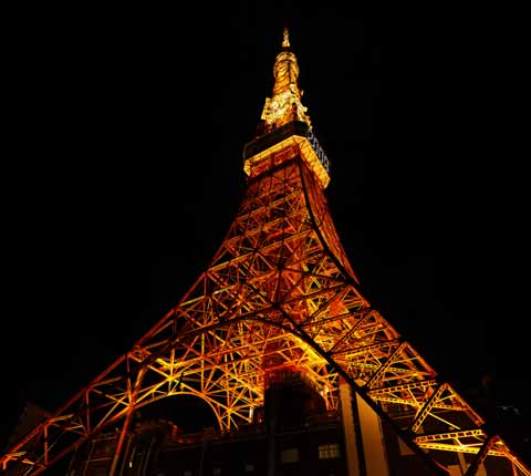 photo,material,free,landscape,picture,stock photo,Creative Commons,Tokyo Tower, collection electric wave tower, I light it up, An antenna, An observatory