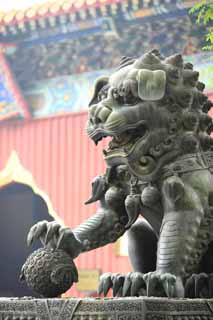 photo,material,free,landscape,picture,stock photo,Creative Commons,A Yonghe Temple lion, pair of stone guardian dogs, lion, , tusk