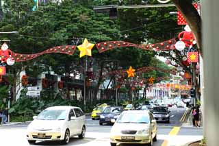 photo,material,free,landscape,picture,stock photo,Creative Commons,An orchard road, car, Christmas, roadside tree, The tropical zone